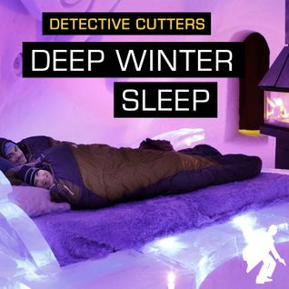 Detective Cutters - Deep Winter Sleep