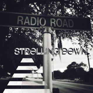 strolling down Radio Rd.
