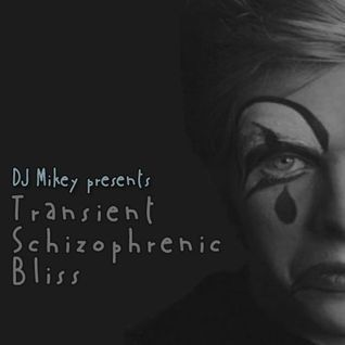 Transient Schizophrenic Bliss | Music With Feels | DJ Mikey