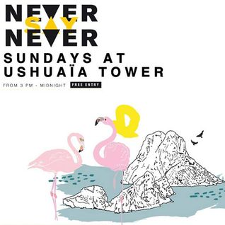 Sasha - Live at Never Say Never, Ushuaia Tower, Ibiza (29-09-2013)