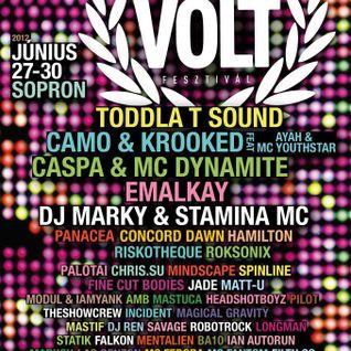 Savage & MC Fantom - VOLT Festival - inMedio stage 120630