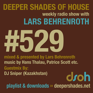 Deeper Shades Of House #529 w/ exclusive guest mix by DJ SNIPER