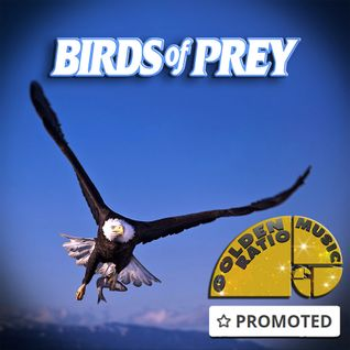 Birds Of Prey *promoted by Mixcloud*