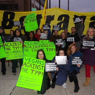 TPP Resistance Call February 10, 2016