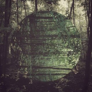 DMTTH 0010 // Bosques de Latinoamerica II