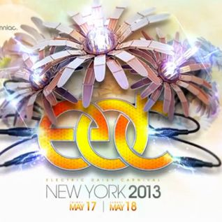 Gareth Emery - Live @ Electric Daisy Carnival (New York) - 18.05.2013