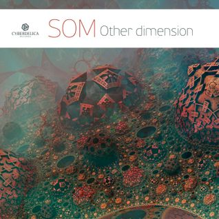 SOM - Other dimension (Mix)