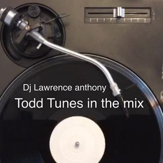 dj lawrence anthony todd edwards tunes in the mix 224