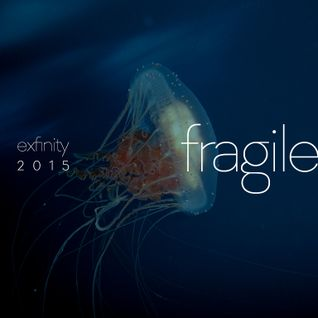 d-phrag - Exfinity 2015: Fragile