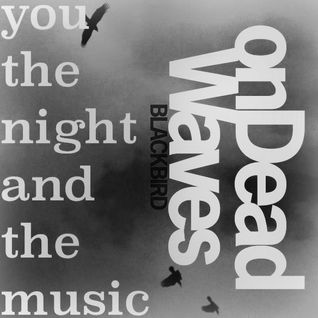 You, the Night and the Music #166