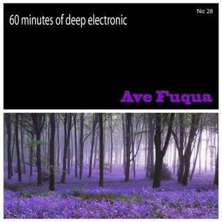 ave fuqua _ 60 minutes of deep electronic No 28