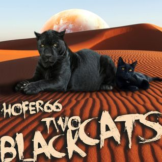 hofer66 - two black cats - live at ibiza global radio - 151026