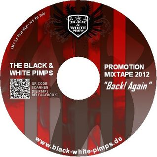 The Black & White Pimps - The Electro and House Mixtape 2012