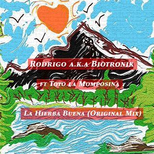 La Hierba Buena (Original Mix)