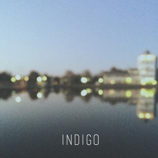 Indigo   29th April 2016