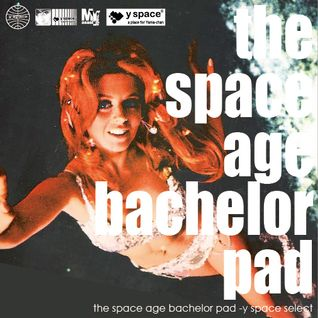 the space age bachelor pad -y space select