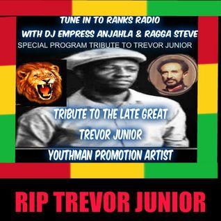 DJ EMPRESS ANJAHLA TRIBUTE TO THE LATE TREVOR JUNIOR JANUARY 27, 2016.mp3