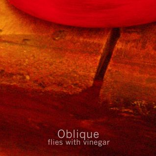 Oblique: Flies with Vinegar (Bruits de Fond Dig it! 01) mp3 download available from bruitsdefond.org