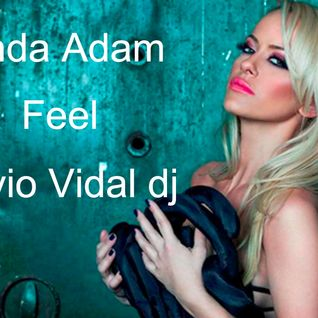 Anda Adam Feel ( Silvio Vidal dj rmx )