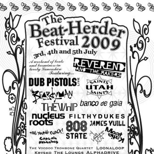 Live at Beat-Herder Festival 2009 - Sunday evening