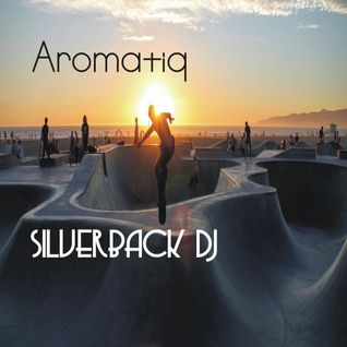 aromatiq new flight 2 silverback dj