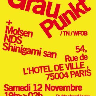 04 techno mix GRAUPUNKT Party - nov 2011