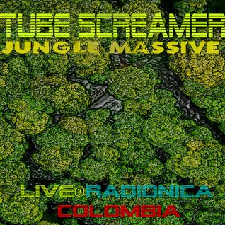 Tube Screamer live @ Radionica Colombia 2015