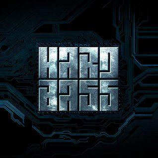 Radical Redemption, Warface, Titan @ Hard Bass 2015 Team Red