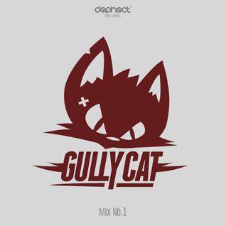 Dephect x Gully Cat - Mix No.1