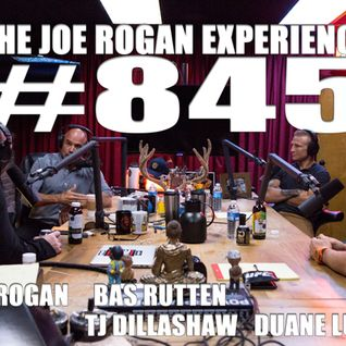 #845 - TJ Dillashaw, Duane Ludwig & Bas Rutten