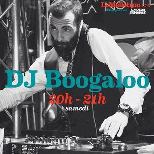 DJ Boogaloo • Les Cochons Flingueurs 2016 • LeMellotron.com