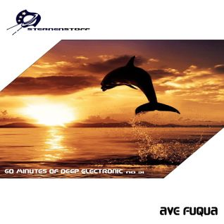 ave fuqua _ 60 minutes of deep electronic No 31