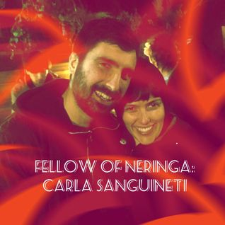 Fellow of Neringa: Carla Sanguineti - 2016.11.23