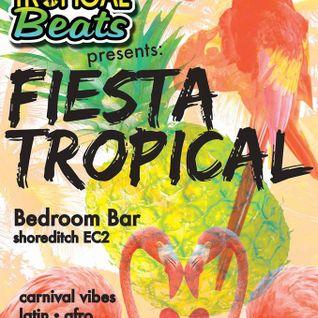 Tropical Beats, Tropical Mash Up