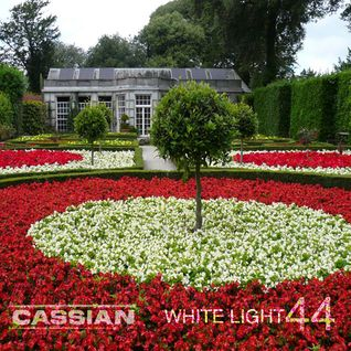 White Light 44 - Cassian