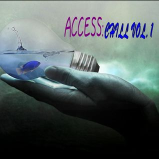 FUNKY HONKY PRESENTS  ACCESS:CHILL VOL.1