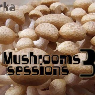 Mushroom Sessions 3
