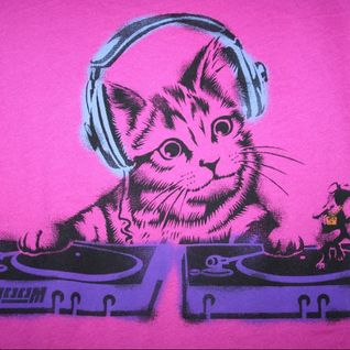 DANCING CAT-LIVE@HOME-..........