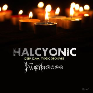 HALCYONIC-flow1