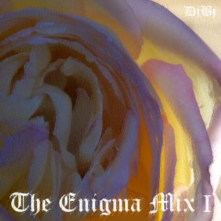 THE ENIGMA MIX I