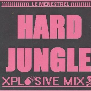 HARD-JUNGLE 2008 // vynil mix by Le Meneztrel.