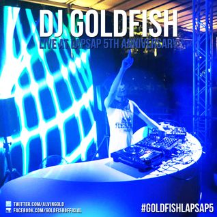 DJ Goldfish - Live at LapSap 5th Anniversary 15.12.2012