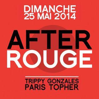 T&T (Paris'Topher vs Trippy Gonzales) Live @ After Rouge 25-05-2014