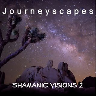 Shamanic Visions 2 (#076)