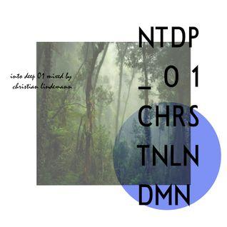 Into Deep #01