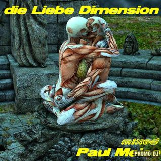 Paul Meise-die Liebe Dimension