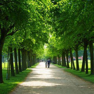 Brina - Grillen im Park