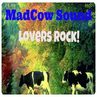 MadCowSound Lovers Rock