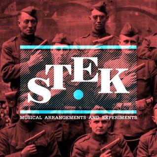 STEK Em Up!