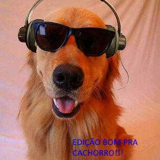 SR FLASH HOUSE 6 EDIÇÃO É BOM PRA CACHORRO!!! BY DJ RICARDO BACANA